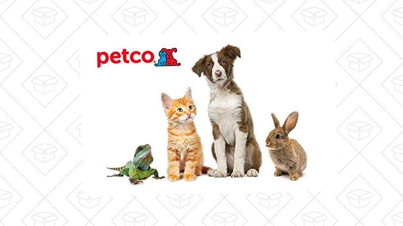 $100 Petco Gift Card | $85 | Amazon | Use code PETCO15