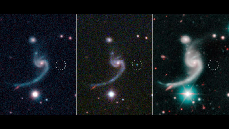 The supernovae (circled) appearing and fading.