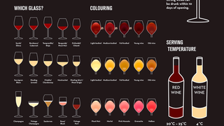 Learn The Ins and Outs of Wine with this Infographic