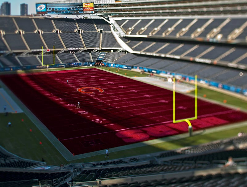Illustration for article titled Bears To Replace Soldier Field Grass With Plush Carpeting