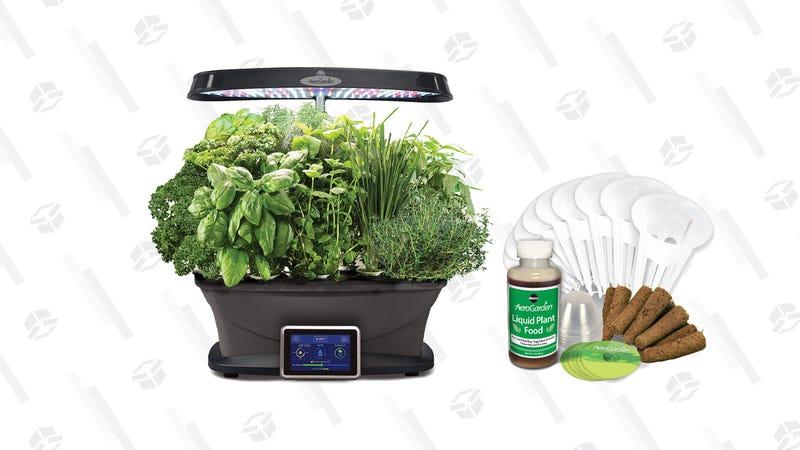 AeroGarden Bounty and select Seed Pod Kit Gold Box | Amazon