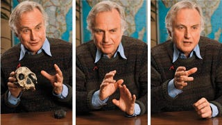 Illustration for article titled The Playboy Interview: Richard Dawkins on Evolution, God and Morality