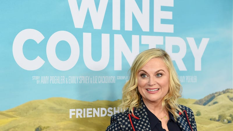Illustration for article titled Amy Poehler's key to wine-tasting is bullshit—as in, you can just bullshit