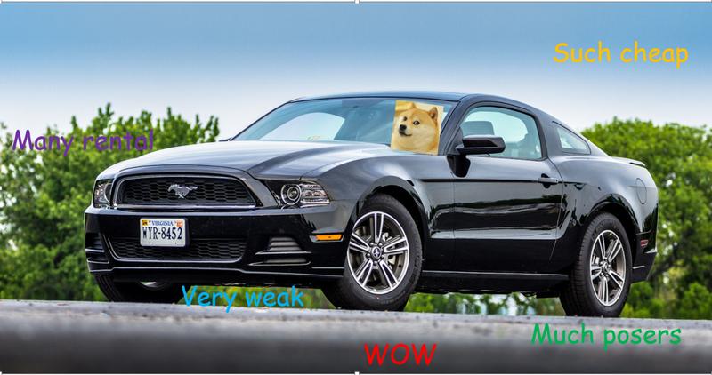 Illustration for article titled Doge V6 Mustang for For Sweden