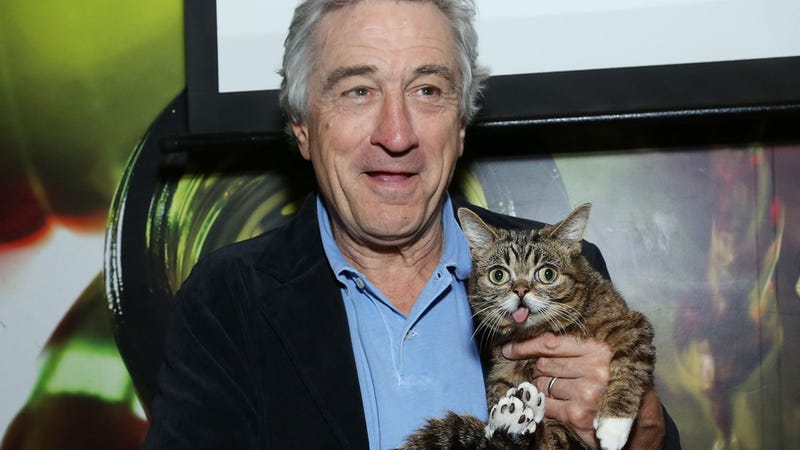 Illustration for article titled Best Photo Ever: When Bobby De Niro Met Lil Bub