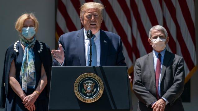 Birx: Health Officials Still Have Their Hands Full Debunking Trump s Covid-19  Myths