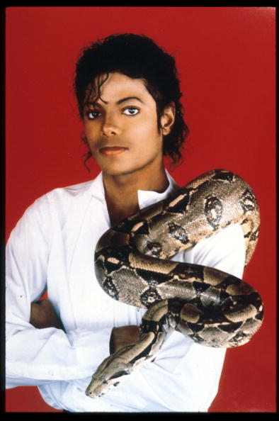 Michael Jackson poses with his pet boa constrictor Sept. 15, 1987. (Liaison)