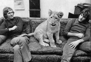 Illustration for article titled Christian The Lion: The Movie • UK Begins HPV Vaccine Program In Earnest