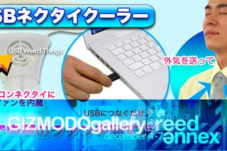 Illustration for article titled At Gizmodo Gallery: Weird Japanese USB Gadgets!