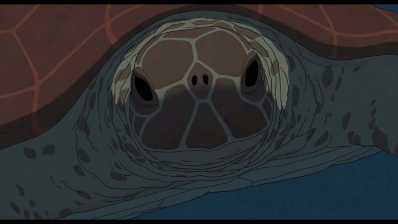 I am the red turtle. I am watching you.