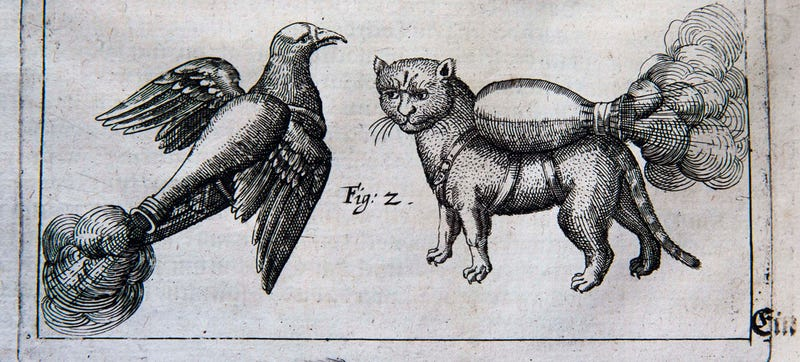 Illustration for article titled Peasant-Killing Potential Of Rocket Cats Shown In 16th Century Manual