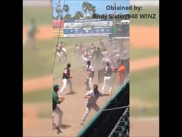 Minor League Teams, Managers Brawl In Front Of Hundreds Of Kids…