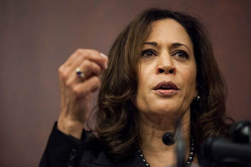 Sen. Kamala Harris (Zach Gibson/Getty Images)