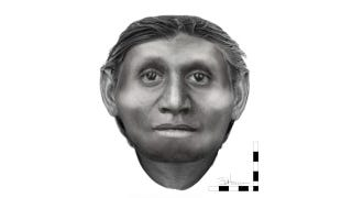 Illustration for article titled New Evidence Points to the Flores 'Hobbit' as a Dwarf Species