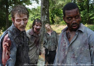 Illustration for article titled The Walking Dead Official Photo