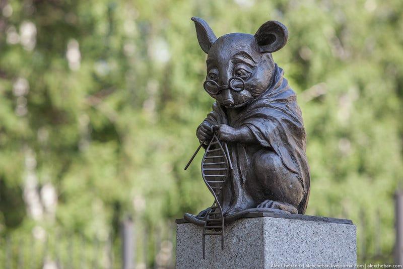 Illustration for article titled Van egy ilyen emlékmű a laboratóriumi egereknek Novoszibirszkben