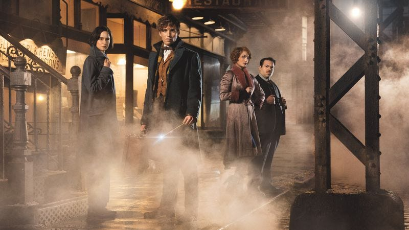 Fantastic Beasts And Where To Find Them (Photo: Warner Bros.)