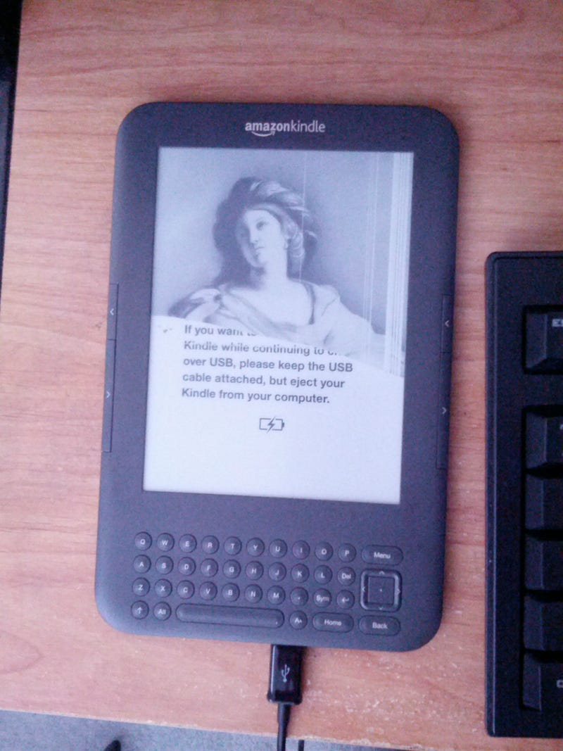 Illustration for article titled So I think my Kindle is dead...