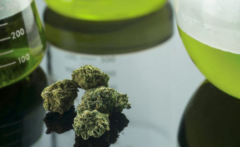 Proponen crear una unidad de medida para regular las dosis en el consumo de marihuana