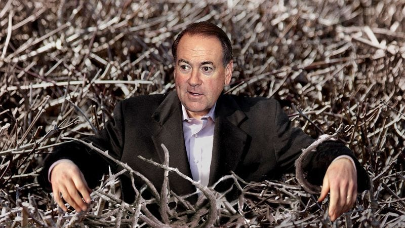 Illustration for article titled Huckabee Campaign Suspended After Candidate Trapped In Briar Patch