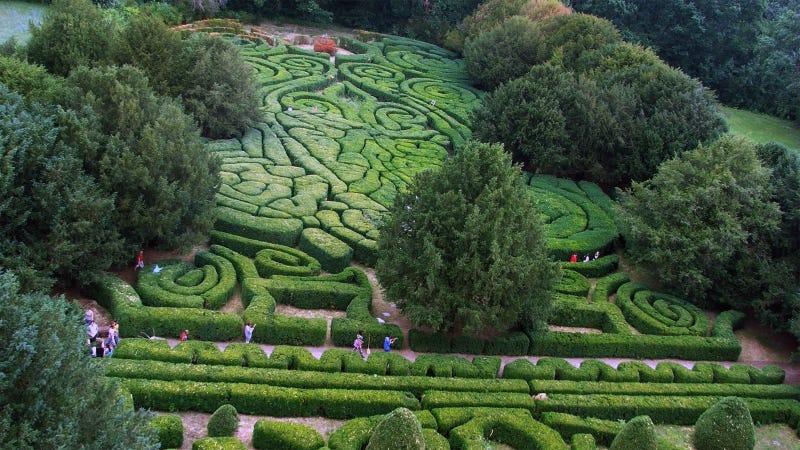 Hedge Maze Aerial