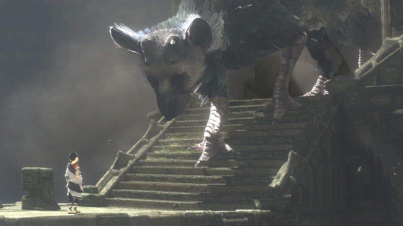 Illustration for article titled Por fin, The Last Guardianllegará a PlayStation 4 en 2016