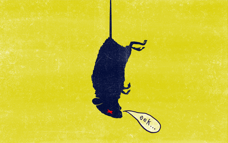 Illustration for article titled The Correct Way To Catch (And Kill) Mice