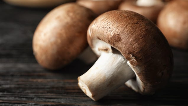 How to Store Your Mushrooms to Make Them Last Longer