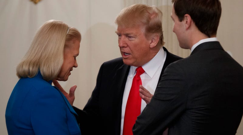 Noted coward and President of the United States Donald Trump talks with noted invertebrate and IBM CEO Ginny Rometty as noted violator of nepotism laws and overall toad Jared Kushner looks on during a meeting on February 3, 2017 (AP Photo/Evan Vucci)