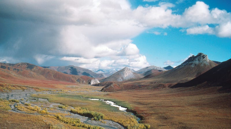 The Arctic National Wildlife Refuge is a national treasure.
