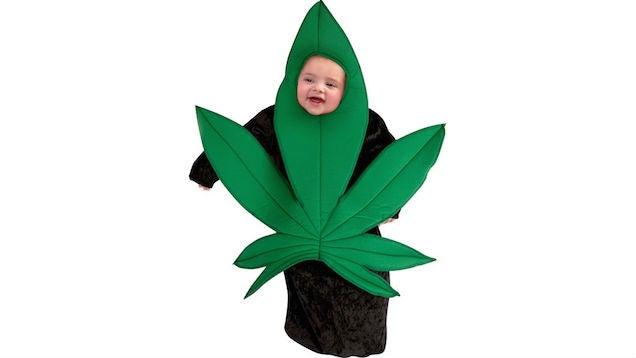 Dress your precious baby as a dank ass pot leaf this halloween