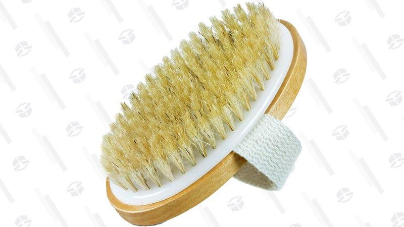 Bar5F Dry Body Brush | $6 | Amazon
