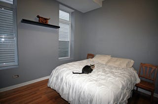 Painting A Bedroom. It s tough to completely screw up painting a room dump the paint on  floor maybe but really well isn t that easy either Paint Room Like Pro