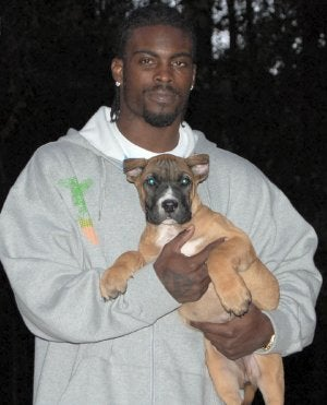 Illustration for article titled Michael Vick, Somehow, With Even Less Credibility