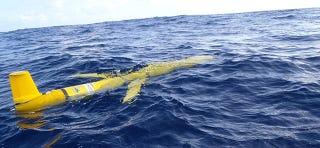 Illustration for article titled 16 robots submarinos estudiarán en detalle los océanos del planeta