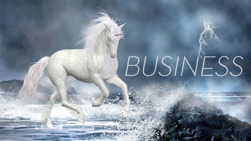 Illustration for article titled This Week In The Business:No Designers, No Dancing Unicorns, No Problem