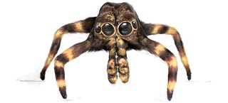 Illustration for article titled Contortionists transform into freaky animals using body paint