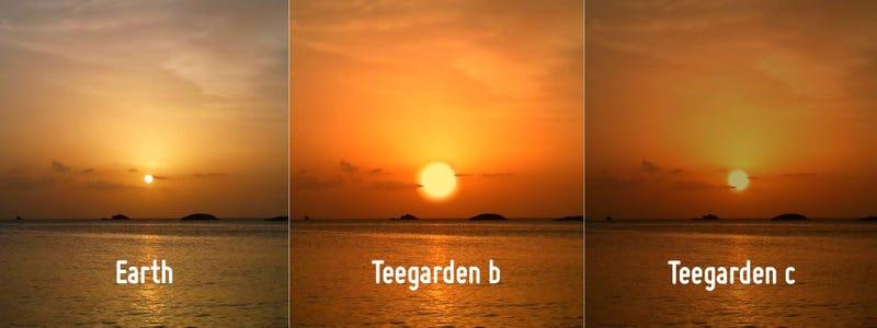 Esta imagen conceptual compara un atardecer en la Tierra con un hipotético atardecer en Teegarden b y Teegarden c