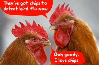 "Illustration for article titled Bird Flu Detection by ""VereFlu"" Disposable Lab-on-a Chip"