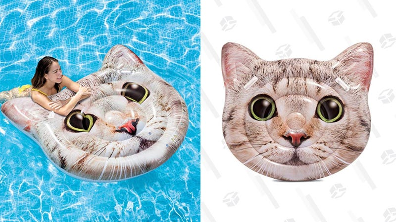 Intex Cat Face Inflatable Island | $15 | Amazon