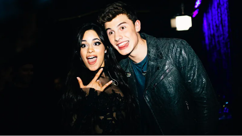 Camila Cabello and Shawn Mendes to Bring Their PDA to the VMAs
