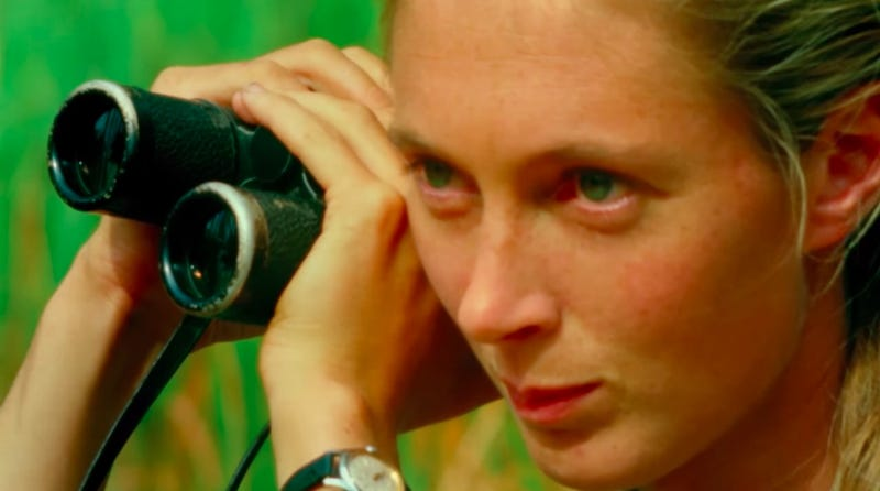 Jane Goodall in National Geographic's Jane