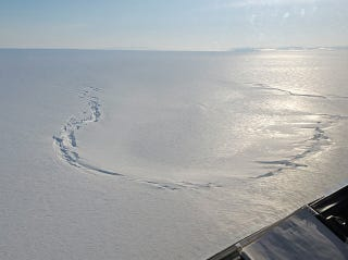 Illustration for article titled Ice Cracks Outline The Collapse Of A Drained Subglacial Lake