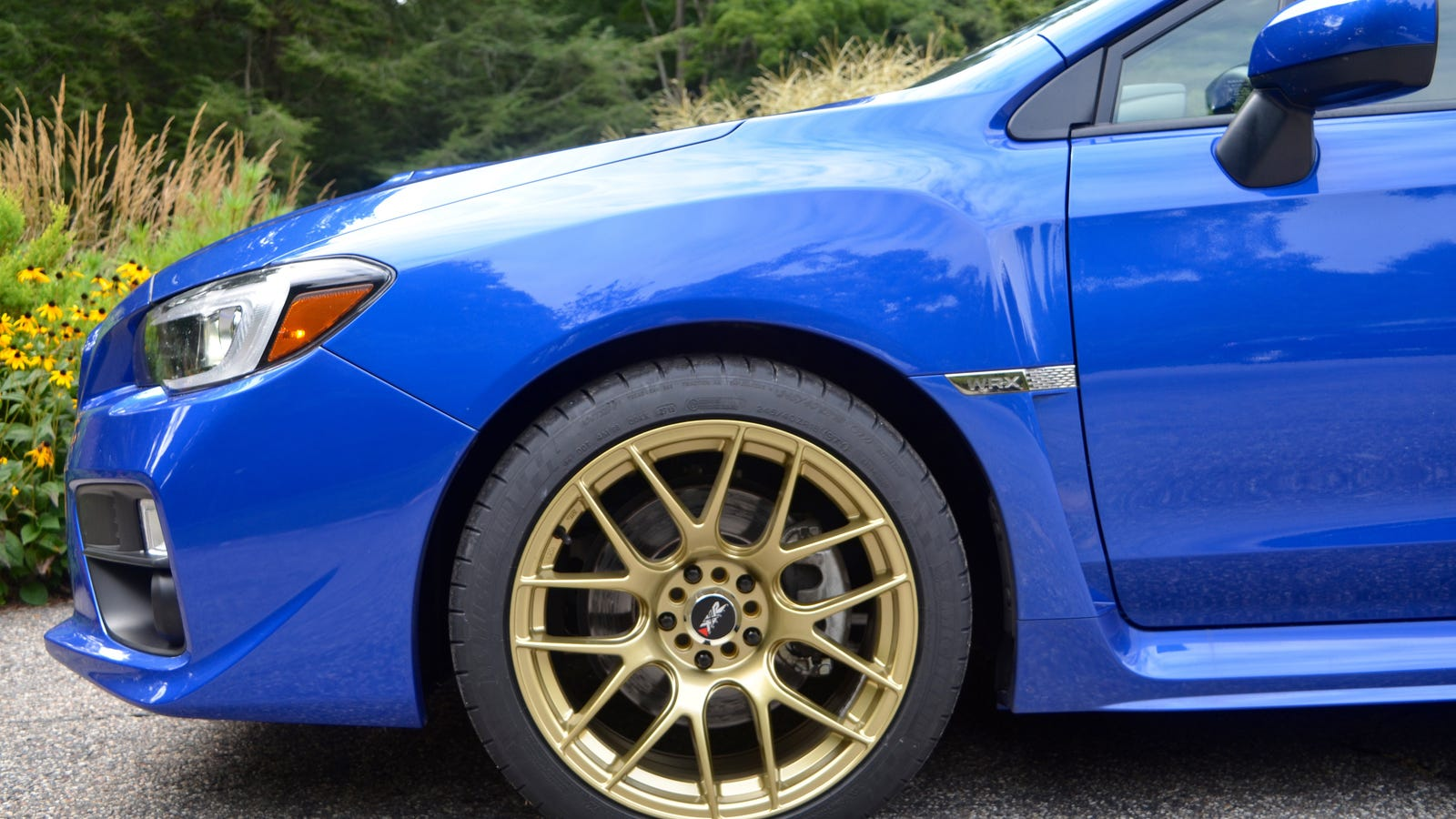 World Rally Blue With Gold Wheels