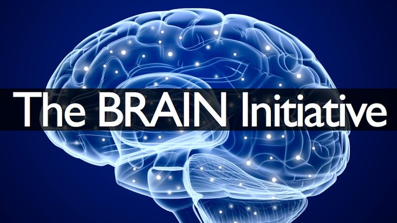 obama has announced a 100 million brain mapping project
