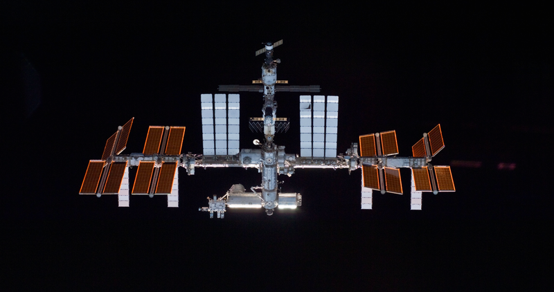 Illustration for article titled Russia Will Stay With The International Space Station Through 2024