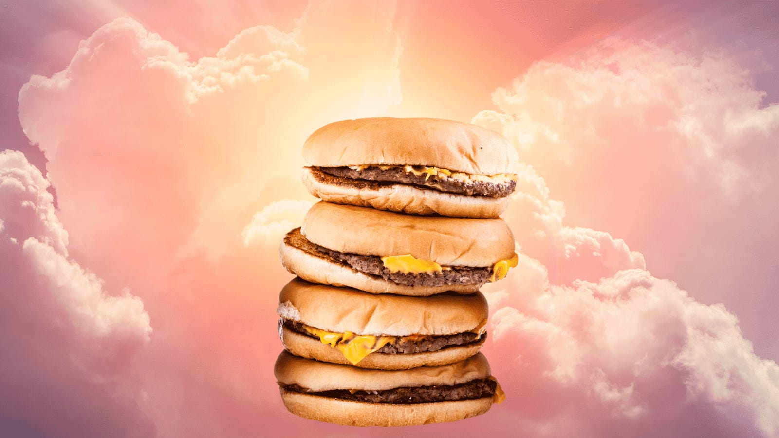 The state of the plain fast food hamburger