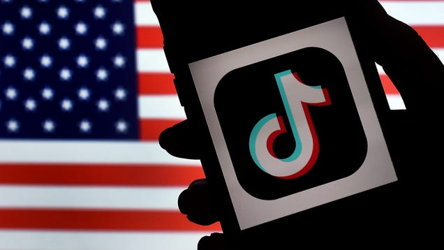 TikTok Lives to See Another Day as Yet Another Federal Judge Strikes Down Trump s Ban