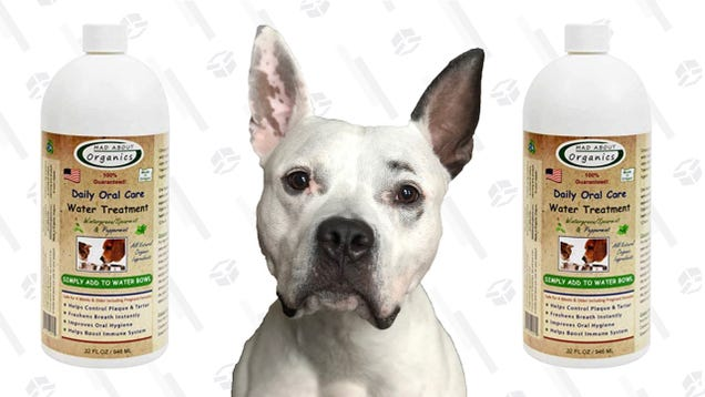 Breathe Easy, Mad About Organics Water TreatmentWill Neutralize Your Good Boy s Bad Breath