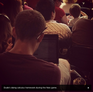 Illustration for article titled Here's A Dude Doing Homework At The Nats Game